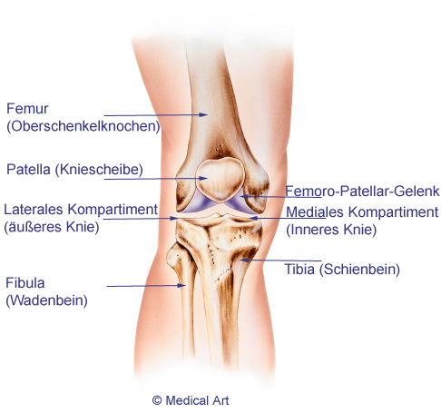 Knieschmerzen verstehen: Harmlose Schmerzen oder Gefahr? | www ...